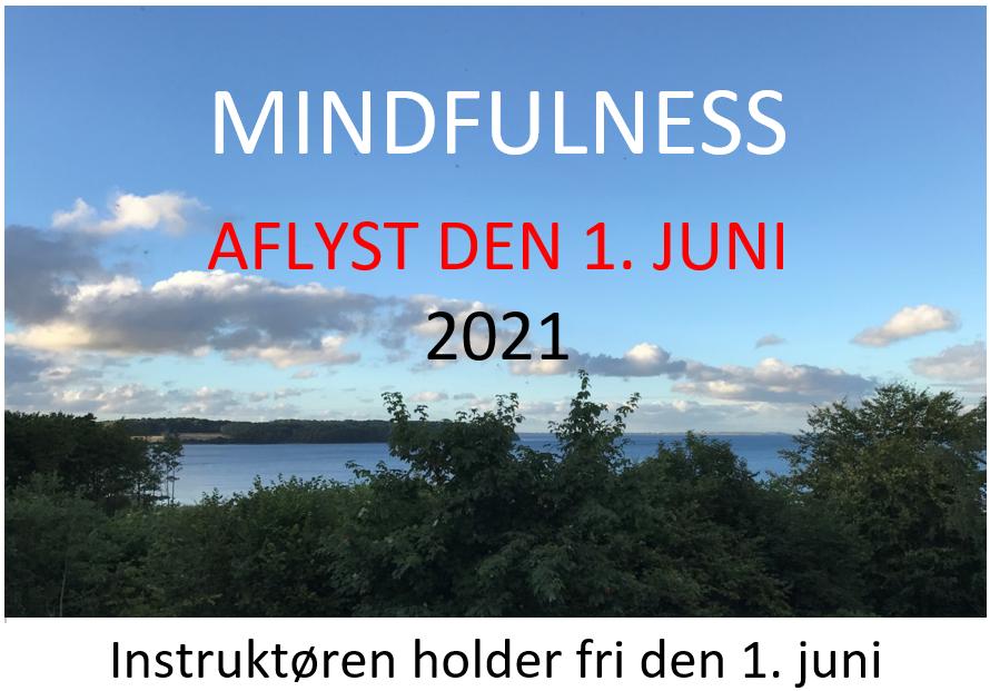mindfulness-aflyst-den-1-juni-2021