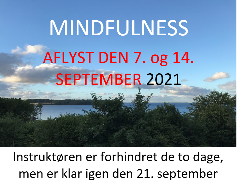 mindfulness-aflyses-den-7-og-14-september
